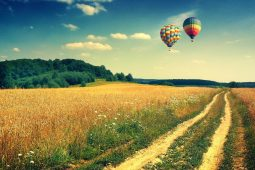6876435-hot-air-balloon-wallpaper