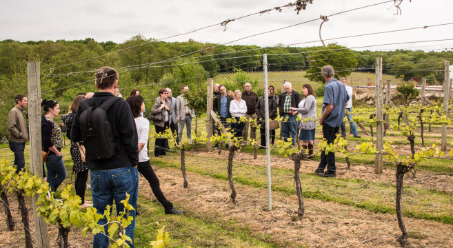 Brighton & Hove Food & Drink Festival Wine Bus tour goes to Bluebell Vineyard. Amongst the guests were International Chef Exchange visitors from Vancouver including chef Felix Zhou. photo ©Julia Claxton